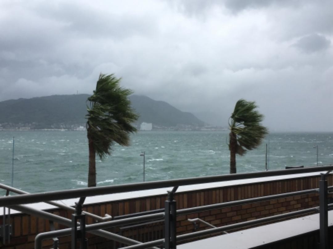 台風東京2019は何月からで何月が多い?日本は多いって本当?
