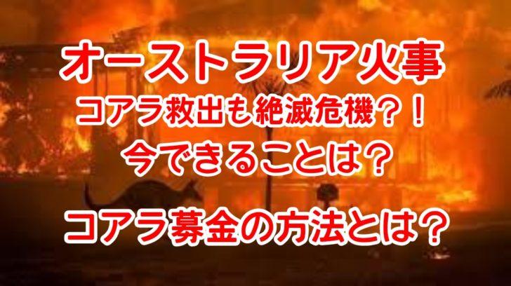 「カンガルー島火事」の画像検索結果