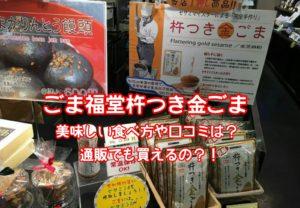 ごま福堂川崎大師杵つき金ごま美味しい食べ方や口コミは?テレビで人気のごまふりかけは通販で買える?モヤさま1月26日放送