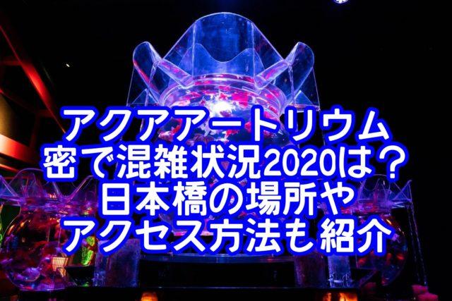 アクアアートリウム密で混雑状況2020は?日本橋の場所やアクセス方法も紹介