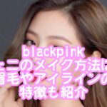 blackpinkジェニのメイク方法は?眉毛やアイラインの特徴も紹介