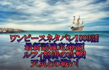 ワンピースネタバレ1003話最新話確定速報!ルフィ怒涛の攻撃で天災との戦い!