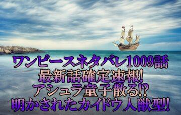 ワンピースネタバレ1009話最新話確定速報!アシュラ童子散る!?明かされたカイドウ人獣型!