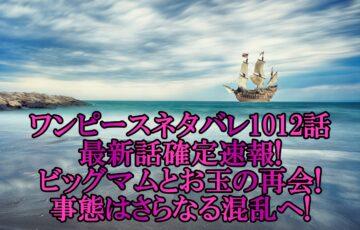 ワンピースネタバレ1012話最新話確定速報!ビッグマムとお玉の再会!事態はさらなる混乱へ!